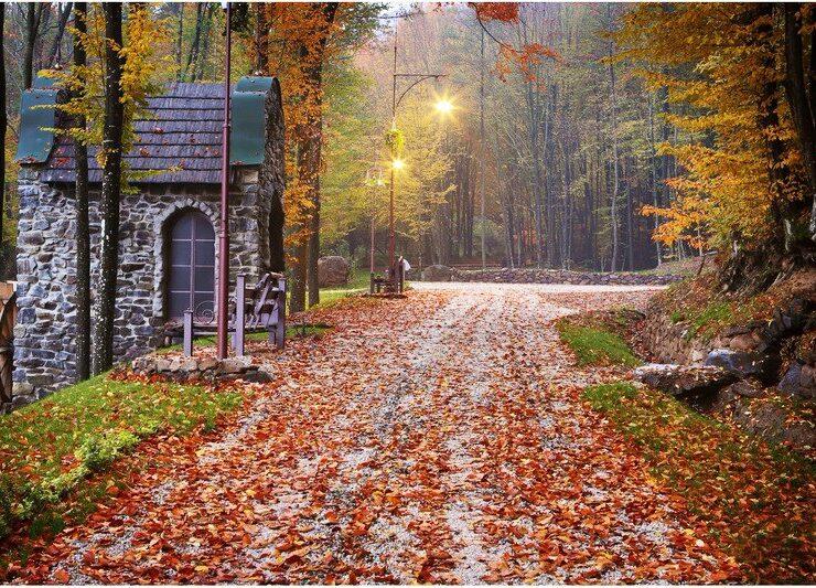 Дивовижна українська осінь. 25 неповторних осінніх пейзажів у різних куточках України (фото)